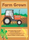 Manifesto dell'alimento biologico dell'azienda agricola Immagini Stock