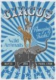 Manifesto dell'annata del circo Fotografie Stock