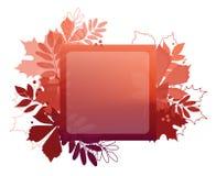 Manifesto della foglia di autunno Foglie rosse dell'acero, castagna, sorba Fotografia Stock Libera da Diritti