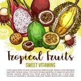Manifesto della frutta tropicale dello schizzo asiatico esotico della bacca illustrazione di stock