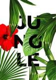 Manifesto della giungla Immagine Stock Libera da Diritti