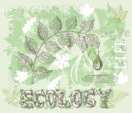 Manifesto di ecologia con cocnept, le foglie e le icone verdi di eco Fotografie Stock