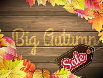 Manifesto di tipografia di Autumn Big Sale Fotografie Stock Libere da Diritti