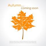 Manifesto di vettore di autunno Fotografie Stock Libere da Diritti