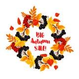 Manifesto di vettore di vendita di autunno della caduta o della bacca della foglia Immagine Stock Libera da Diritti