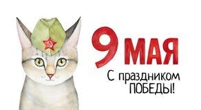 Manifesto di Victory Day May 9 con il ritratto del gattino Immagine Stock