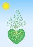 Manifesto ecologico Fotografia Stock