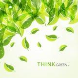 Manifesto, insegna o aletta di filatoio per verde Think Fotografia Stock Libera da Diritti