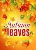 Manifesto luminoso di caduta con sole caldo, foglie di acero di autunno, iscrizione, l'effetto dell'incandescenza del sole Vettor Immagine Stock