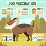 Manifesto ortogonale del fondo di vaccinazione del cane illustrazione vettoriale