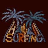 Manifesto praticante il surfing di tipografia delle Hawai Concetto nello stile d'annata Immagine Stock Libera da Diritti