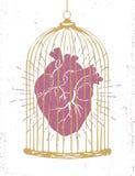 Manifesto romantico con un cuore umano in una gabbia Immagini Stock Libere da Diritti