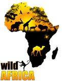 Manifesto selvaggio dell'Africa Immagine Stock Libera da Diritti