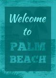 Manifesto tropicale della palma di estate Fotografia Stock