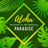 Manifesto tropicale di estate di paradiso con le foglie tropicali royalty illustrazione gratis