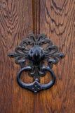 Maniglia del metallo su un portello di legno Fotografie Stock Libere da Diritti