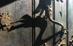 maniglia del tipo di drago Fotografia Stock