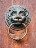 Maniglia della porta d'annata con il fronte dei leoni Immagini Stock Libere da Diritti