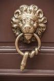 Manija formada león metálico en puerta de madera Imagen de archivo libre de regalías