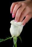 Maniküre- und Nagelkunst Lizenzfreie Stockbilder
