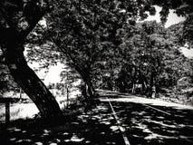 Manikganj, Bangladesh: Luz & sombra Fotos de Stock Royalty Free