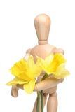 Manikin And Daffodils Stock Photo