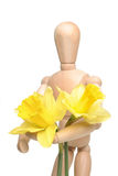 Manikin and daffodils Stock Photo