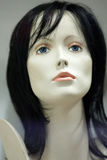 A manikin head Royalty Free Stock Photography