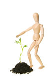 Manikin and seedling Stock Photography