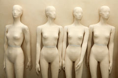 Manikins without clothes Stock Image