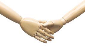 Manikins shaking hands. Closeup of realistic anatomical manikin figures shaking hands, isolated on white background Royalty Free Stock Photos