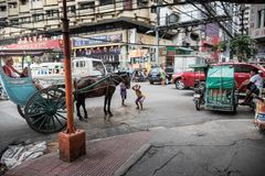 MANILA FILIPPINERNA - JANUARI 18, 2018: Manila kineskvarter, Filippinerna royaltyfri foto