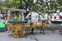 Manila konia fracht Zdjęcia Royalty Free