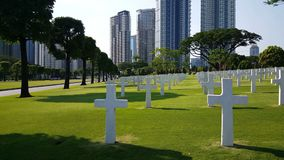 In Manila, Philippines. American Cemetery, rows of white crosses, wide shot still stock footage
