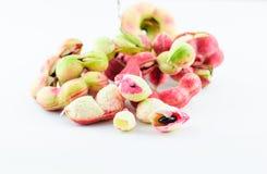 Manila tamarind fruit Stock Images