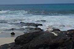 Manini-` owali Strand Hawaii Stockbild