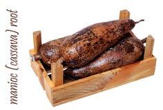 Manioc (cassava) Stock Photos