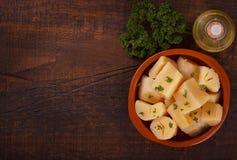 Manioca esculenta del Manihot, yucca, manioca, mandioca, maranta arundinacea brasiliana Fotografie Stock Libere da Diritti