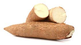 Manioca isolata su un bianco fotografia stock libera da diritti