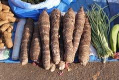 Maniocs et haricot siliculeux Images stock