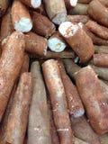 maniok Royalty-vrije Stock Afbeelding