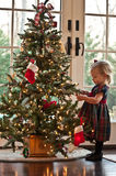 Manipulación del árbol de navidad Fotografía de archivo