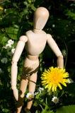 Maniquí con la flor Imagen de archivo libre de regalías