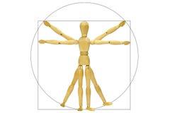 Maniquí de Vitruvio Fotografía de archivo libre de regalías