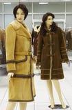 Maniquí en compartimiento en la venta de la ropa del invierno Imágenes de archivo libres de regalías