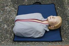 Maniquí para el seminario del CPR de los primeros auxilios foto de archivo