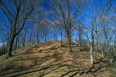 Manière jusqu'au dessus de montagne Image libre de droits