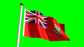 Manitoba flag stock footage