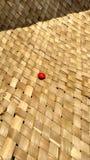 Manjadikuru-Adenanthera pavonina auf einer Strohmatte Lizenzfreie Stockfotografie