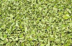 Manjericão doce secada Fotos de Stock